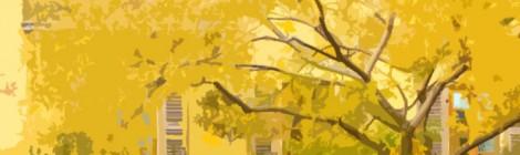 The Yellow Tenement