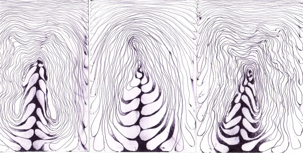 These are a set of 3 line drawings that started from a simple idea;  Draw a continuous line without removing the pen from the paper. No special pen. No special paper.