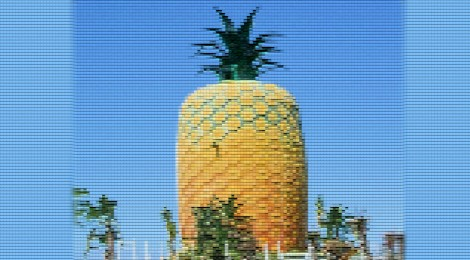Ode to a Pineapple